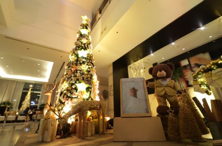 Seda Abreeza's Christmas Tree Lighting on It's 5th Year in Davao
